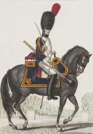 Рядовой конно-гренадерского полка императорской гвардии Наполеона